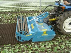 Imants JNC frees