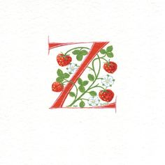 Initial letter 'Z' in red with strawberries on watercolor paper.