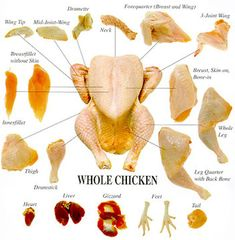 Do you want to get more healthy fatty acids and nutrients into your carnivore diet meal plan by using all the meat cuts, including organs? Here is a PDF guide to using a whole chicken. Cooking 101, Cooking Recipes, Food Charts, Culinary Arts, Culinary Classes, Chicken Recipes, Agriculture, Butcher Store, Meat Butcher
