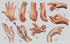 Hand Study 1 by irysching.deviantart.com on @deviantART