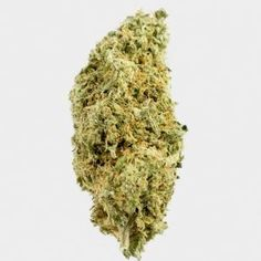 Medical marijuana Archives - Page 4 of 4 - Global Weed Shop Weed Shop, Buy Weed, Weed Strains, Indica Strains, Weed California, Weed Buds, Farm Online, Marijuana Recipes, Buy Cannabis Online