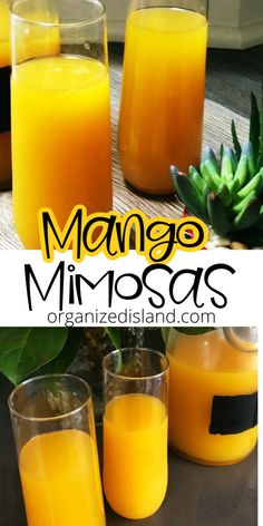 These delicious mango mimosas are just what you need for springtime soirees. We are enjoying all the flowers blooming from the recent rains and it really makes springtime so beautiful. Easy Dinner Recipes, Easy Meals, Easy Recipes, Stir Fry Meal Prep, Quinoa Gluten Free, Thanksgiving Salad, Slow Cooker Potatoes, Vegan Slow Cooker, Low Carb Smoothies