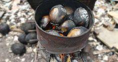 Bisakah kelapa bakar untuk obat? - Kelapa Bakar Untuk Obat masalah Jantung, Diabetes dan Darah Tinggi, KELAPA BAKAR meluruhkan kencing batu dan batu ginjal
