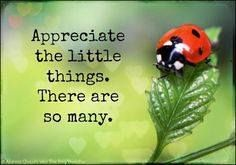 """Appreciate the LITTLE THINGS. THERE ARE SO MANY!"" —The Silva Method. TRUE! For all we know, LITTLE THINGS MEAN a LOT and LITTLE THINGS when added tw♥-gether, BECOME GREAT THINGS! ...♥bingT✿ܓ"