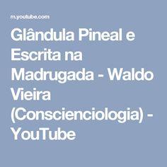 Glândula Pineal e Escrita na Madrugada - Waldo Vieira (Conscienciologia) - YouTube