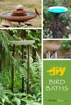 DIY Bird Baths ideas from http://www.thegardenglove.com/ !