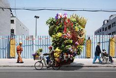 Now that's a flower arrangement :)