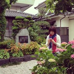 #30jidori 紫陽花ごしのかおりんさん♡ p.twipple.jp/dSEjk