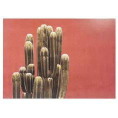 Orangefarbenes Bild bedruckt mit Kaktusmotiv 65x95cm CARPET Jetzt bestellen unter: https://moebel.ladendirekt.de/dekoration/bilder-und-rahmen/bilder/?uid=976b742e-f8c6-5c64-9392-61cbf67683ad&utm_source=pinterest&utm_medium=pin&utm_campaign=boards #bilder #rahmen #dekoration