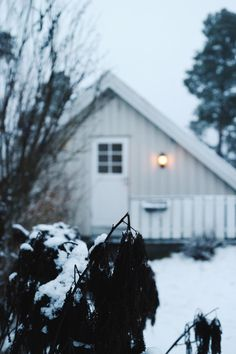 Winter Wonderland - Oslo, Norway in the snow Oslo Winter, Norway Winter, Winter Fun, Snow Showers, Snow Covered Trees, Frozen In Time, Wooden Cabins, Small Island, Winter