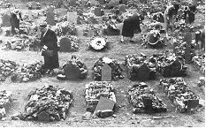 Many children died. They could not beat the boers in the war. Went for the soft spots women and children.
