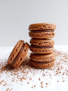 Chocolate Macarons with Nutella Ganache - Confessions of a Confectionista