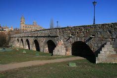 Pont de Salamanca és un pont romà que creua el riu Tormes a la vora de Salamanca. La importància del pont com a símbol de la ciutat es pot veure en la primera caserna de l'escut de la ciutat. El pont es presenta al segle XXI com a fruit de diverses restauracions, una de les catàstrofes que més li van afectar va ser la riuada de Sant Policarp.
