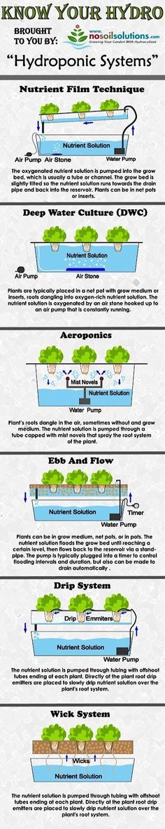 Different Types of Hydroponic Systems Infographic #hydroponicseasy #hydroponicsinfographic #hydroponicssystem