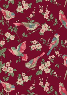 British Birds | A romantic alternative to our large scale florals first designed for AW11, with beautifully-drawn, vibrantly-coloured birds. We were inspired by the kind of birds and blossoms you might find in English gardens | Cath Kidston Library Collection AW15 |