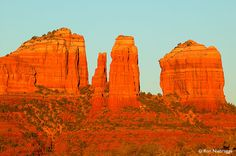 Cathedral Rock, Sedona, Arizona Planning November trip and photo shoot for my upcoming website: Millionaire-in-Motion, Rich in Mind, Body and Soul.....it's time to join the challenge...and experience the journey of life