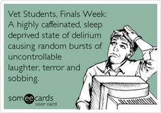 Vet Students, Finals Week: A highly caffeinated, sleep deprived state of delirium causing random bursts of uncontrollable laughter, terror and sobbing.