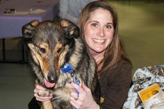 Dogs go on dates with their owners at Animal Friends' 'Must Love Dogs' speed dating event.