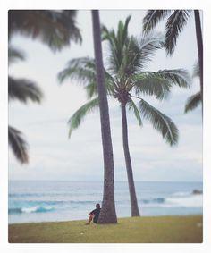 Seul au monde... #lareunion #meditation #tropiques #tropiqueducapricorne #beach #palmiers #oceanindien #picoftheday #instapic #instabeach #instaphoto #instaoftheday #photooftheday #ocean #landscape by nathaliecarnet
