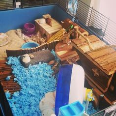 Pebbels her cage; theme The beach.