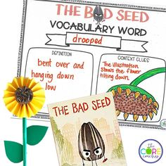 Vocabulary student activities and more for The Bad Seed by Jory John