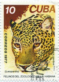 Cuba 1977