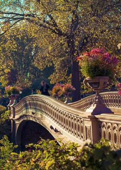 Bow Bridge in Central Park Manhattan, New York City. I'll have to visit this when I go this summer!