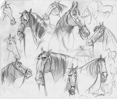 Character Sketches | Davids Doodles