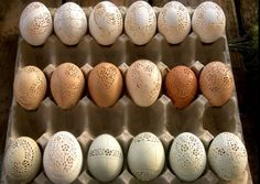 Beautiful carved eggs using dremel multi tool :) http://www.home-dzine.co.za/crafts/craft-carved-eggs.htm