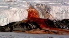 Blood Falls Antarctica Facts - An unusual and strange waterfall with a bright vivid red water color. Located in the Antarctica, McMurdo Dry Valley.