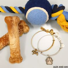 ALEX AND ANI Prints of Love Charm Bangle! Prints of Love is a CHARITY BY DESIGN Bangle Supporting the ASPCA!