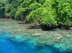Kimbe, Papua New Guinea - Oh to scuba dive there...
