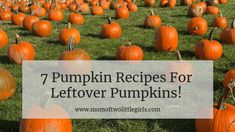 7 Pumpkin Recipes for Leftover Pumpkins!