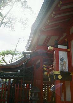 やさしさの中に射し込む光。さりげない気遣いが元気にしてくれるのです。ありがとう。  #japan  #nara  #yasashisa  #sashikomuhikari  #arigatou  #film  #filmcamera  #canon  #DEMI  #EE17