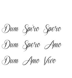 dum spiro spero dum spero amo - Google Search