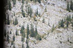 4 Freizeiten Königssee Berg Fels Bäume