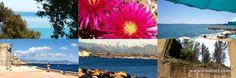 Cote d'Azur - praia, alpes e castelos