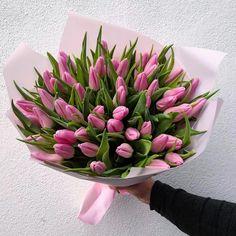 Flower Ideas, Wedding Events, Succulents, Plants, Succulent Plants, Plant, Planets