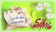 Silvia   Prajem všetko najlepšie k dnešným meninám