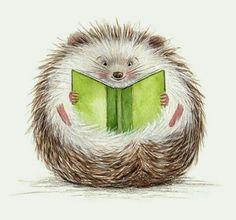Hedgehog reading!