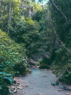 The 27 Waterfalls of Damajagua , Dominican Republic http://luneblog.com/blog/2014/3/11/descending-the-27-waterfalls-of-damajagua