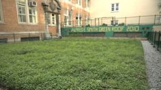 GREEN ROOF at SMITH HIGH SCHOOL, BRONX. zolofilms documents the origins of the Alfred E. Smith's green roof and how this school is using thi...
