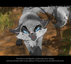 deviantart+warrior+cats | Graypools Warning by JB-Pawstep on deviantART