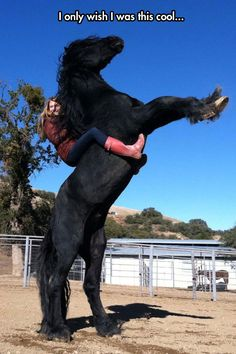 Huge horse rearing up, really huge! I Only Wish I Was This Cool.