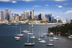 Top 7 Cultural Attractions in Central Sydney