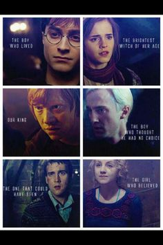 Harry, Hermione, Ron, Draco, Neville and Luna