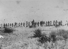 Chief Naiche on horse in center, Geronimo standing in from of him. All the Apache warriors lining the hill, Arizona. 1884 ck