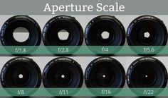 Making sense of aperture.