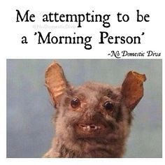 Me attempting to be a morning person #mornings #morningpeople #coffeeme #needcoffee