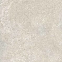 "Daltile VR01-24241P-SAMPLE Porcelain Paramount White Floor Tile - 24"" X 24"" (Sam Paramount White Tile Sample"